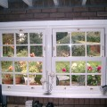 sash-windows-3